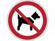 19: Verbotsschild - Mitführen von Hunden (Tieren) verboten (gemäß DIN EN ISO 7010, ASR A1.3)